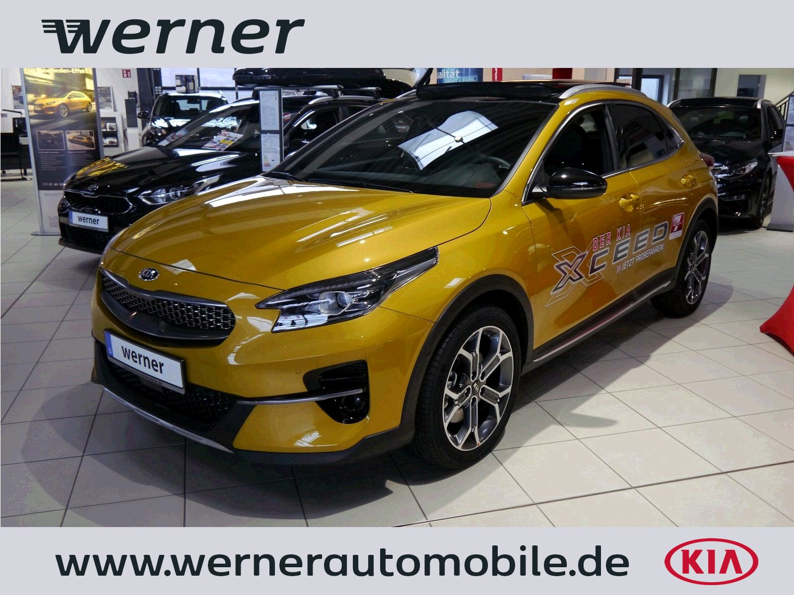 KIA XCeed CD 1.6 T-GDI Launch DCT Glasdach
